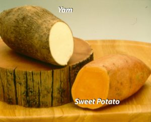 Sweet_Potatoes_Yams