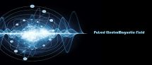 :: Pulse Electromagnetic Field Therapy (PEMF) ::